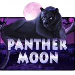 Slotxo Panther Moon