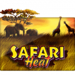 Slotxo Safari Heat