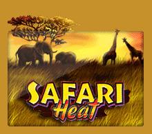 Slotxo Safari Heat